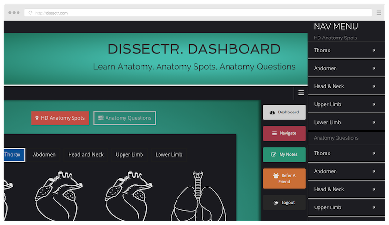 Dissectr Online Cadaveric Anatomy Revision Learn Anatomy Online